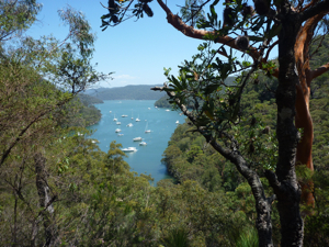 View from the Ku-ring-gai Chase National Park