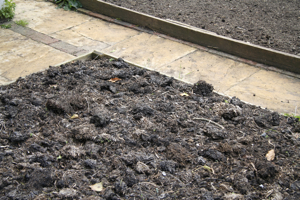 Well-rotted manure