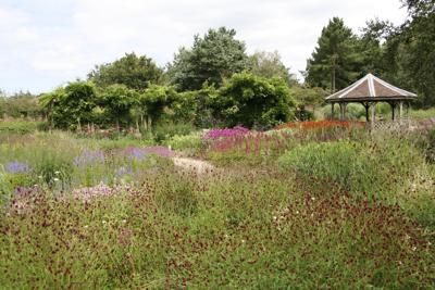 Pensthorpe Millennium Garden.JPG