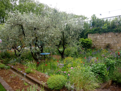 Perfumer's Garden
