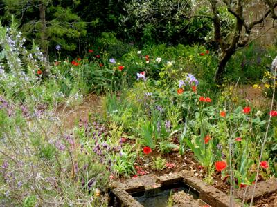 L'Occitane garden
